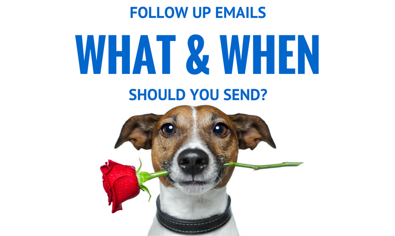 FOLLOW UP EMAILS- WHAT AND WHEN SHOULD YOU SEND?